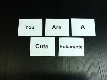 Biotines: Valentine's Day Transcription & Translation Protein Synthesis Activity