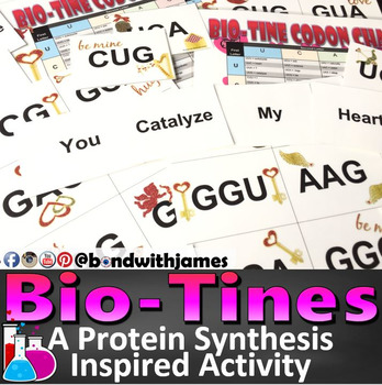 Biotines: A Valentine's Day Inspired Protein Synthesis Activity