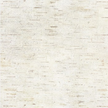 Birch Digital Papers, Wood Grain Backgrounds, Woodland Outdoor, Nature