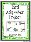 Bird Adaptation Project