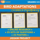 Animal Adaptations Research Project - Bird Beaks, Feathers