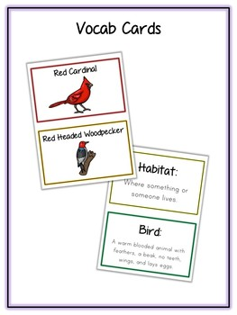 Bird Animal Research Project - 12 Types, Vocab Cards, Packet, Book  + More!