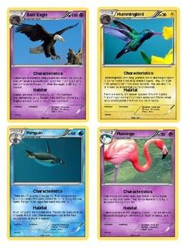 "Bird ""Pokemon"" Awards"