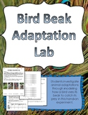 Bird Beak Adaptation Lab Experiment