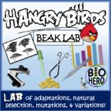 Bird Beak Adaptation and Natural Selection Lab