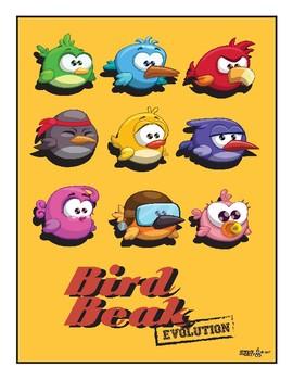 Bird Beak Evolution