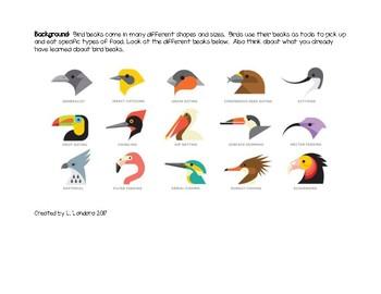Bird Beak STEM Challenge