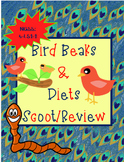 Bird Beak Shapes & Diet Scoot