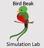 Evolution: Bird Beak Simulation Lab