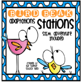 Bird Beak Stations and STEM Connections