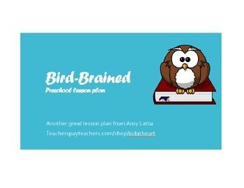 Bird-Brained preschool lesson plan