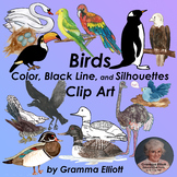 Clip Art - Birds - Realistic - Color - Black Line - Silhouettes