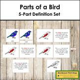 Bird Definition Set (Red)