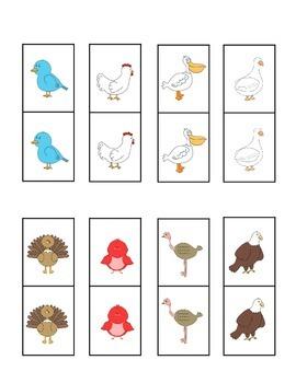 Bird Dominoes