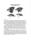 Bird Evolution Project