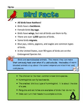 Bird Facts
