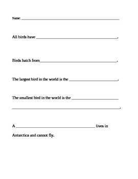 Bird Facts Worksheet