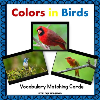 Bird Interactive Matching Cards / Hands-on Lessons / Montessori style