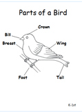 Bird Journal K-1st (aligned with Common Core Standards)