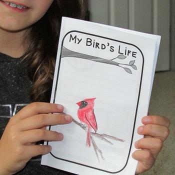 Informational Bird Journal