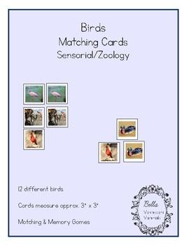 Bird Matching Cards