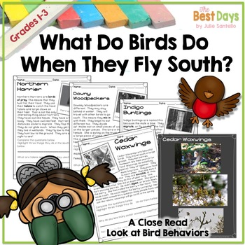 Birds and Bird  Migration: What Do Birds Do When They Fly South?