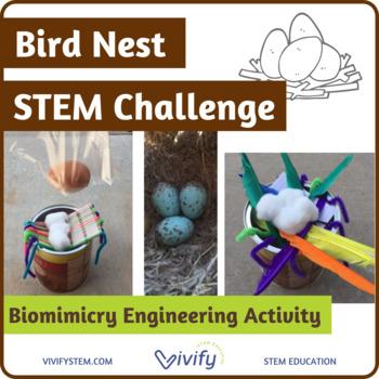 Bird Nest STEM Challenge (Biomimicry Engineering Activity)