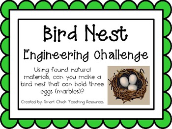 Bird Nests: Engineering Challenge Project ~ Great STEM Activity!