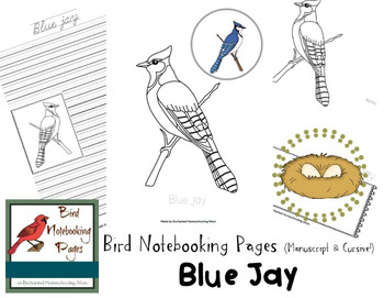 Bird Notebooking Pages Weekly Series Blue Jay Pack
