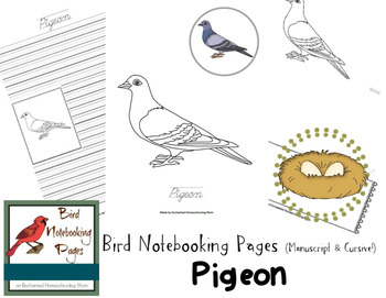 Bird Notebooking Pages Weekly Series Pigeon Pack