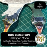 Bird Paper Dissection - Scienstructable 3D Dissection Mode