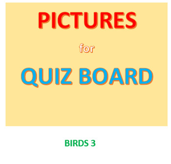 Bird Picture Set 3 for Quiz Board