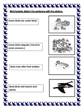 Bird Pockets. Integrated Unit. Primary, Kindergarten.