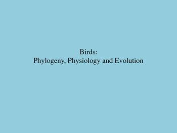 Birds: Phylogeny, Physiology & Evolution Powerpoint, Stud