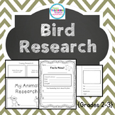 Bird Research