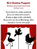 Bird Shadow Puppets with Songs and Bird Sounds, Preschool