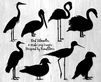 Bird Silhouettes Clipart, 8 Hand Drawn Birds, Wildlife Clipart Illustrations