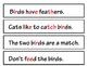 Bird Thematic Unit for Preschool