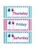 Bird Theme Days  of the Week