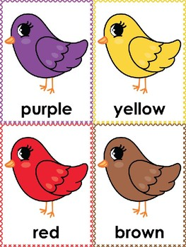 Bird Color Posters & Memory Cards  Dollar Deal