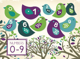 Bird Themed Counting Poster (subitizing dots)