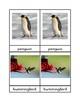 Bird Three Part Cards