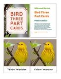 Three Part Cards: Toob Birds (Ft. Proper Common Names)