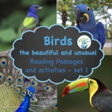 Animal Adaptations Birds Differentiated Reading Passages