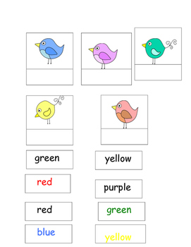 Bird Unit for Special Education