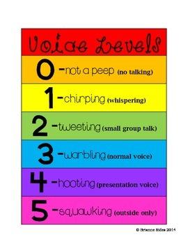 Bird Voice Levels