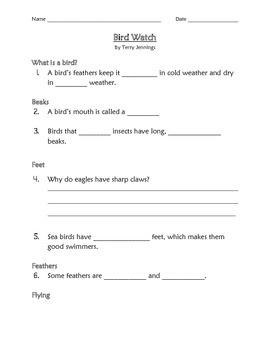 Bird Watch Worksheet