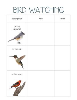 Bird Watching Record
