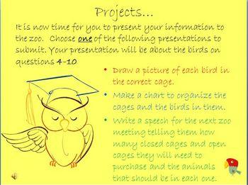 Bird Webquest