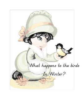 Bird Wonders in Winter